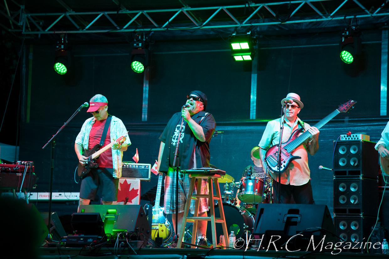 Smoke Wagon Blue Band (4)
